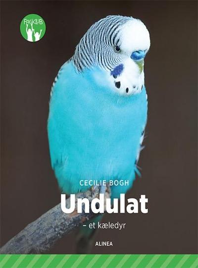 undulat_400x541