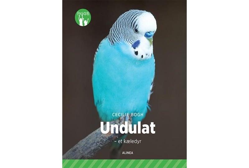 undulat_400x541_padded