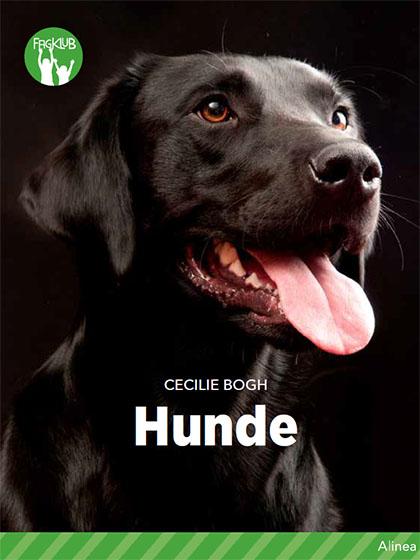 hunde indhold