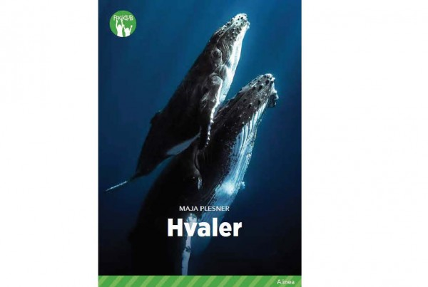 hvaler_cover